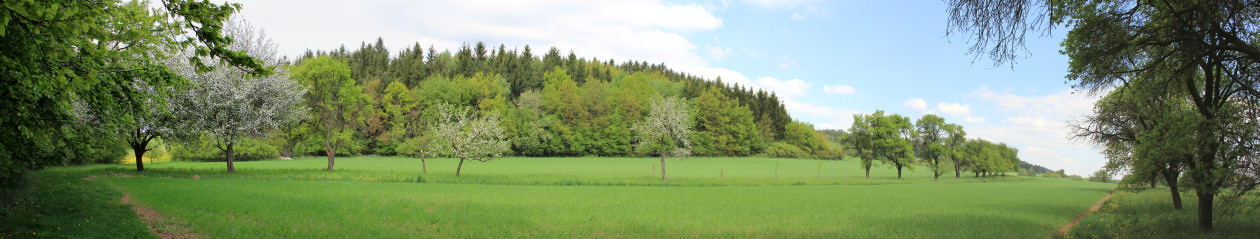 Obec Zvolenovice